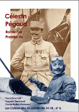 Célestin Pégoud, Roi de l'Air et premier As